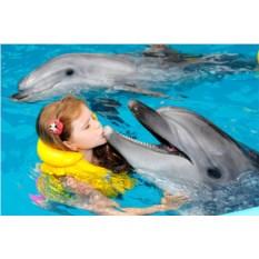 Программа «Лайт» (2 взрослых и 2 ребенка)