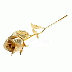 «Золотая роза»
