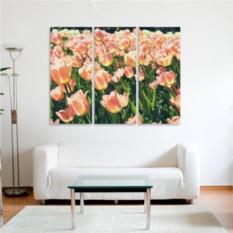 Модульная картина Тюльпановое поле