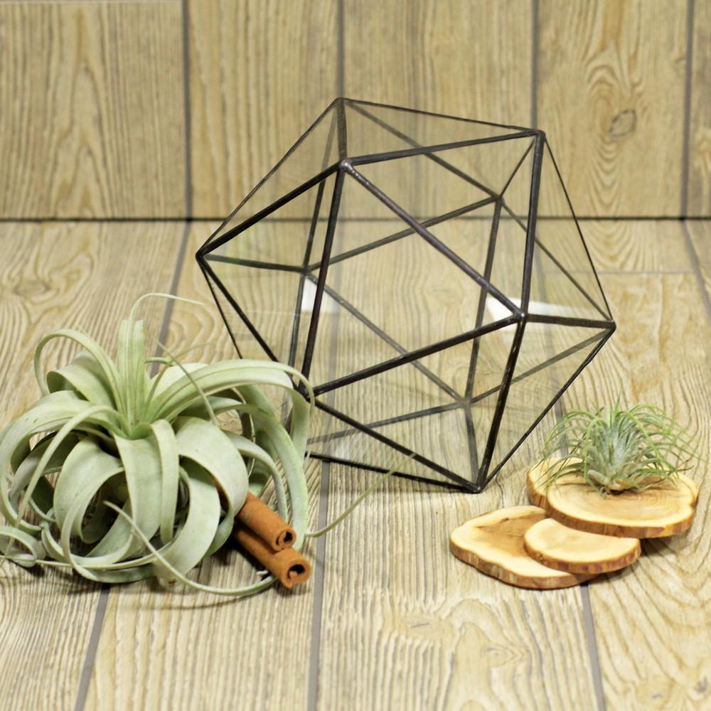 Геометрический террариум Икосаэдр закрытый