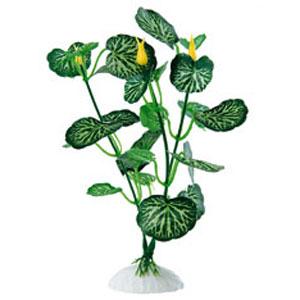 Растение шелковое «Ferplast»