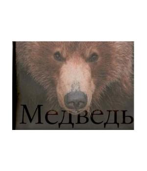 Книга «Медведь»