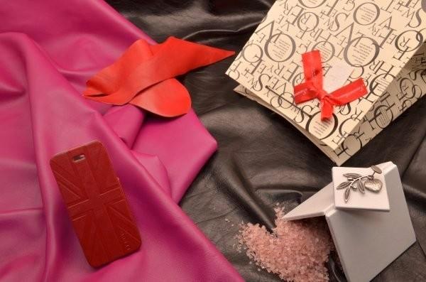 Красный чехол-книжка для iPhone 5S «Орден Тамплиеров»