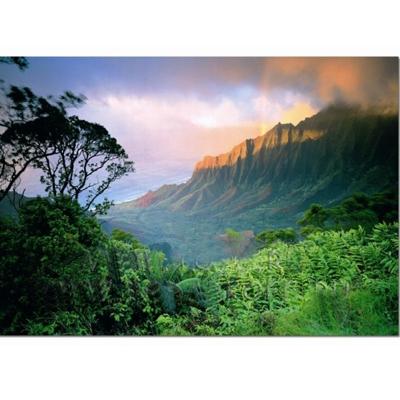 Пазл «Гаваи»