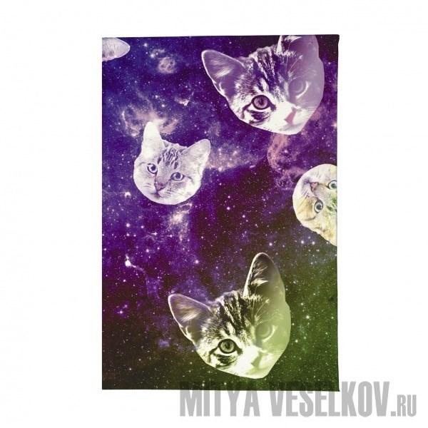 Визитница Сны о кошках