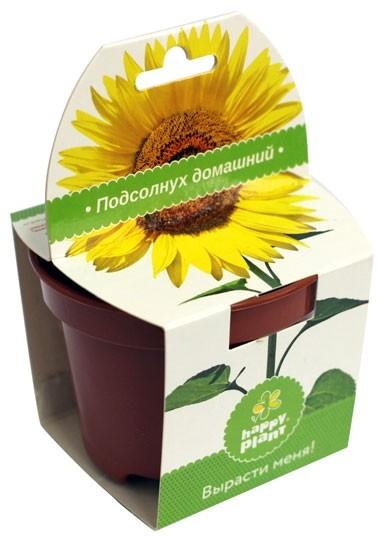Набор для выращивания в горшочке Подсолнух