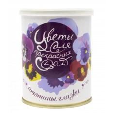 Набор для выращивания фиалки Цветы для прекрасных дам