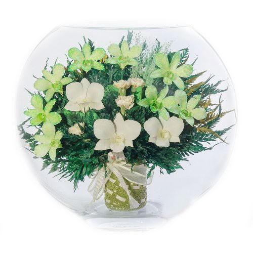 Цветочная композиция Белая и зеленая орхидея