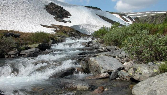 Сплав по реке Укса (9–11 мая)