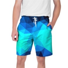 Мужские шорты Polygon