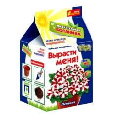 Набор для выращивания петунии «Вырасти меня»