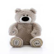Интерактивная игрушка Luv'n Learn Серый медведь
