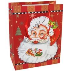 Новогодний пакет Дед мороз