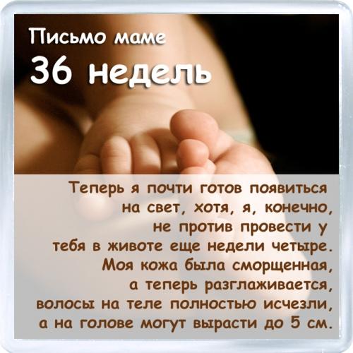 Магнитный подарок: Письмо маме. 36 недель.