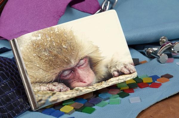 Бежевый кожаный зажим для денег Спящая обезьянка