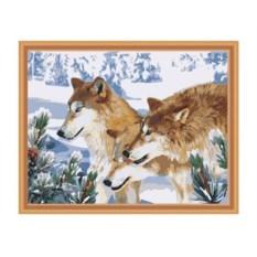 Картина по номерам 40х50 см Волки зимой