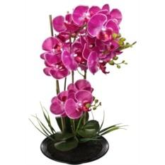 Декоративная композиция Яркая орхидея (48 см)