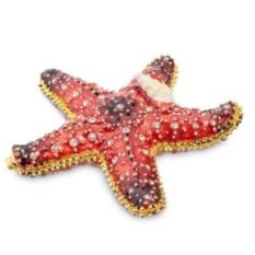 Шкатулка Морская звезда Nobility