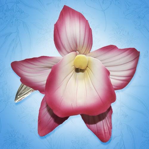 Орхидея фарфоровая Тропическая красавица
