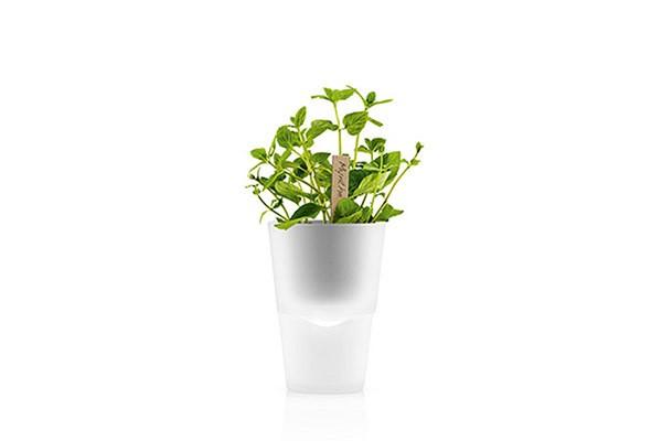 Матовый горшок для растений с естественным поливом Herb Pot