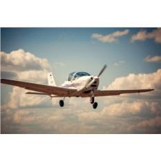 Ознакомительный полет на Cessna-182 (40 мин.)