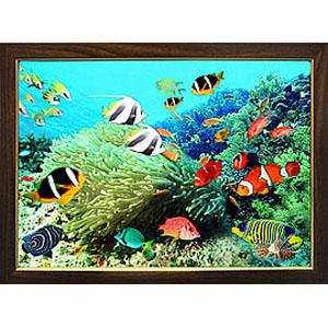 Объёмная картина «Тропическое море»