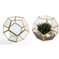 Интерьерное украшение Флорариум, размер 20 х 20 см