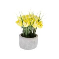 Декоративная композиция Восхитительные тюльпаны