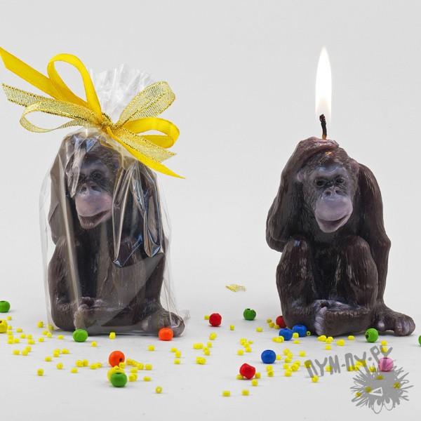 Свеча Шимпанзе