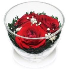 Композиция из красной розы в упаковке