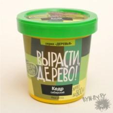 Набор для выращивания растений Кедр сибирский