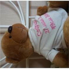 Мягкая именная игрушка Медведь в белой футболке