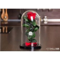 Роза в колбе «Будь прекрасна как эта роза»
