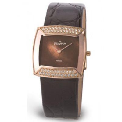наручные часы Skagen Titanium