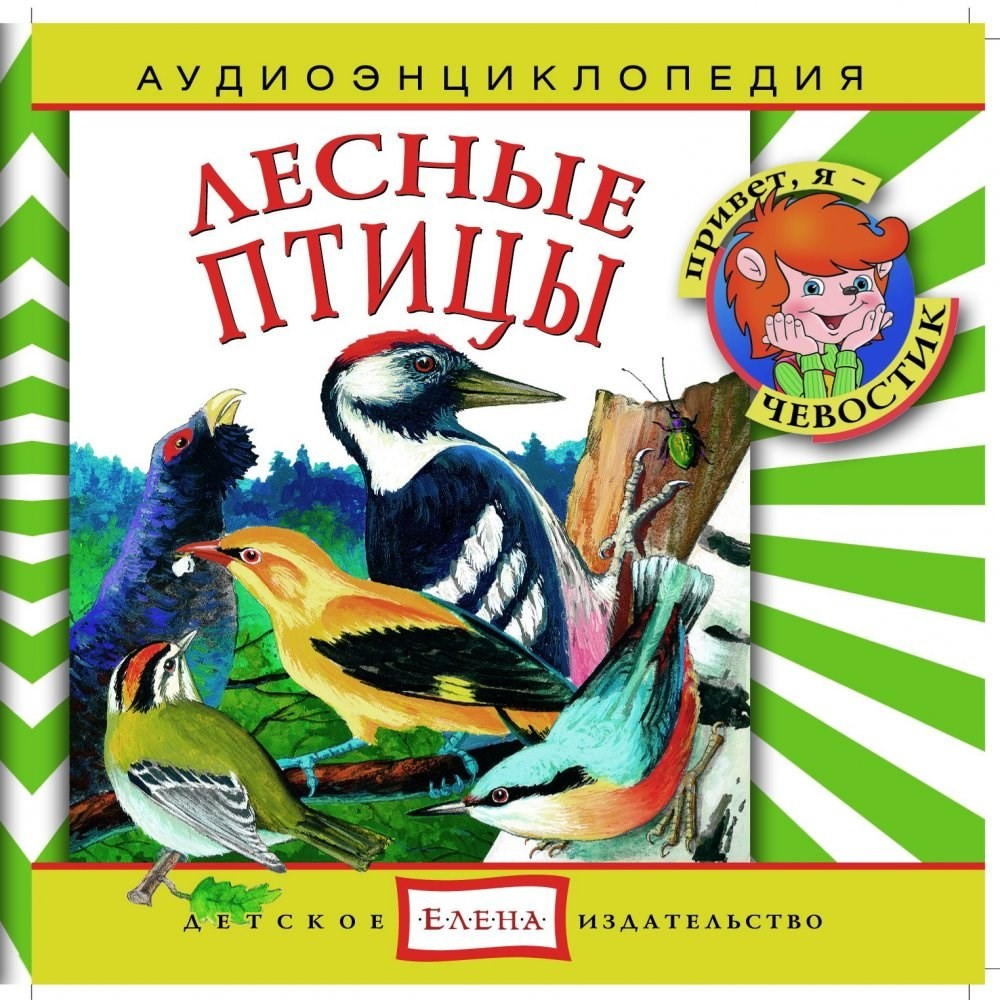 Энциклопедия дяди Кузи и Чевостика Лесные птицы