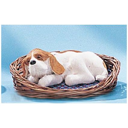 Собака в корзинке