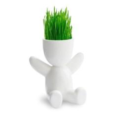 Набор для выращивания EcoMan Baby