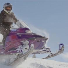 Катания на снегоходе для двоих