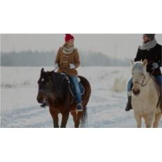 Романтическая прогулка на лошадях для двоих (1 час)