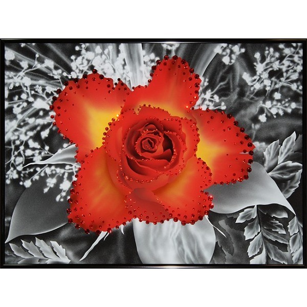 Картина Swarovski Контраст цвета - чайная роза