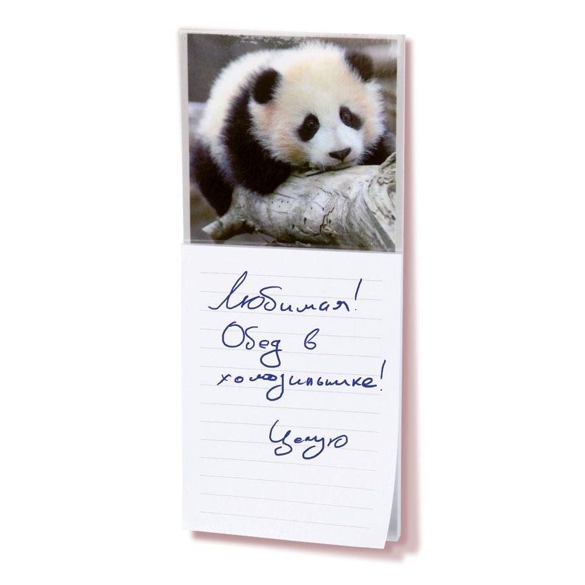 Магниты с блокнотом для записей (Вариант : панда)
