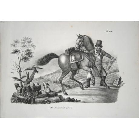 Литография «Лошадь»