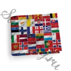 Кожаная обложка для студенческого Flags
