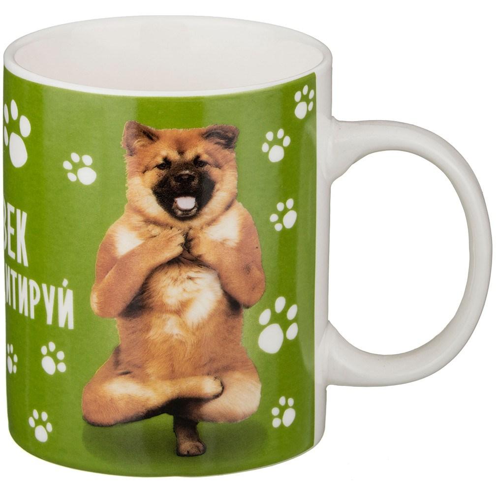 Кружка Собака: медитируй