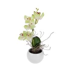 Декоративная композиция Орхидея