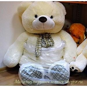 Медведь Нестор
