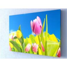 Фотокартина Желтые тюльпаны