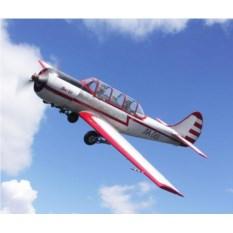 Полет на ЯК-18Т (20 минут)