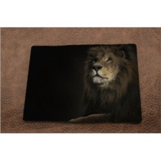 Обложка на паспорт «Лев в темноте»