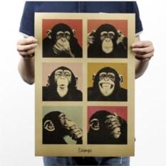 Плакат Шимпанзе